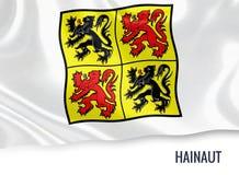 比利时状态埃诺省旗子 库存例证