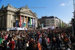比利时自豪感2013年- 14 库存照片