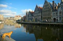 比利时跟特graslei 免版税库存照片