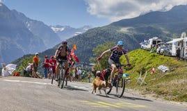 比利牛斯山的非职业骑自行车者 免版税库存图片