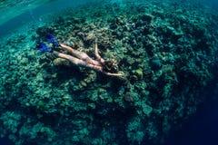 比基尼泳装下潜的妇女在热带海 图库摄影