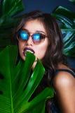 比基尼泳装和太阳镜的美丽的性感的妇女在热带植物中 秀丽,方式 温泉,医疗保健 热带假期 免版税库存照片