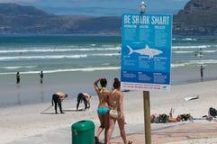 比基尼泳装女孩鲨鱼警告 库存图片