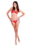 比基尼泳装模型性感的年轻人 免版税图库摄影