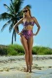 比基尼泳装模型摆在性感在棕榈树前面 库存照片