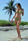 比基尼泳装模型摆在性感在棕榈树前面 库存图片