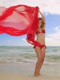 比基尼泳装白肤金发的女孩夏威夷红&# 免版税库存照片