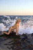 比基尼泳装白肤金发的岩石妇女 免版税库存图片