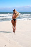 比基尼泳装的妇女在夏天海滩 图库摄影