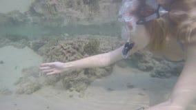 比基尼泳装的年轻白肤金发的女孩有美好的图的废气管水下在印度洋在斯里兰卡 股票视频