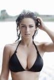 比基尼泳装的性感的妇女有湿头发和大山雀的 库存图片