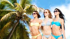 比基尼泳装的愉快的少妇在夏天靠岸 图库摄影
