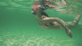 比基尼泳装的游泳的美女在水面下,潜航在透明,蓝色加勒比海水中 股票录像