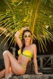 比基尼泳装的美丽的妇女在热带棕榈下 背景复制绿色空间 免版税库存图片