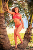 比基尼泳装立场的白肤金发的女孩在棕榈之间今后看 免版税库存图片