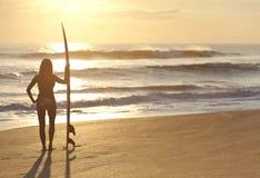 比基尼泳装&冲浪板的女子冲浪者在日落海滩 图库摄影