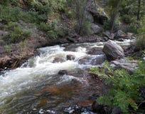 比弗河的图片在科罗拉多 免版税图库摄影
