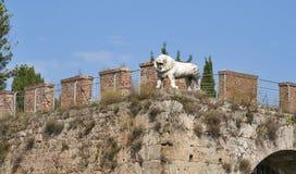 比萨,托斯卡纳,意大利 新的城市墙壁 库存照片