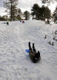 比赛冬天 免版税图库摄影