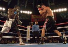 比赛的专业拳击手 图库摄影