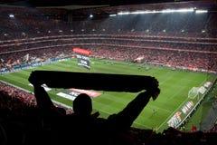 比赛足球场 库存图片