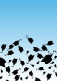 毕业帽子抛 库存照片