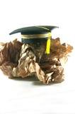 毕业帽子 库存图片