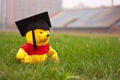 毕业生熊 免版税库存图片