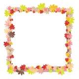 毗邻在白色背景隔绝的五颜六色的秋叶框架  免版税库存图片