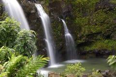 毛伊热带瀑布 免版税图库摄影