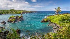 毛伊的热带天堂 免版税库存图片