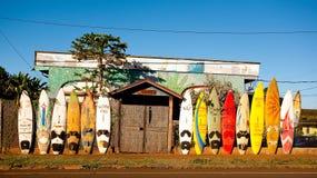 毛伊风帆冲浪的海岛。 免版税图库摄影