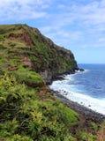 毛伊,夏威夷海岸线 库存照片
