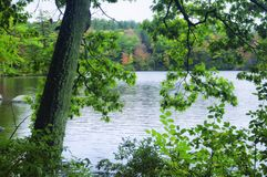 毛刺池塘国家公园秋天新英格兰 库存照片