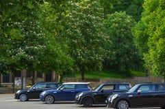 毛尔布龙,德国MAI 17日2015年:蓝色颜色四辆相同汽车  库存照片