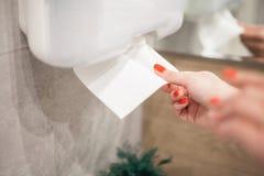 毛巾纸分配器 妇女的手在卫生间里采取毛巾纸 库存照片