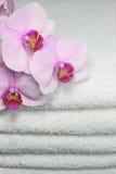 毛巾 图库摄影