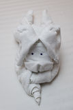 毛巾Origami艺术 免版税库存图片
