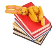 毛毡玩具兔子顶视图在书说谎 免版税库存照片