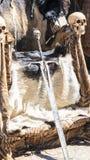 毛皮和头骨中世纪王位有北欧海盗剑的 椅子wi 库存图片