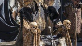 毛皮和头骨王位有北欧海盗剑的 与动物的椅子 免版税库存图片