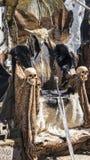 毛皮和头骨荣耀王位有北欧海盗剑的 椅子与 免版税库存照片