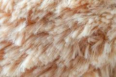 毛皮背景羊毛纹理摘要 免版税库存照片