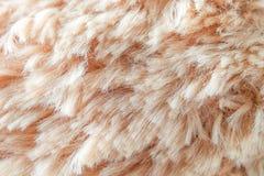 毛皮背景羊毛纹理摘要 图库摄影