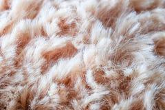 毛皮背景羊毛纹理 库存照片