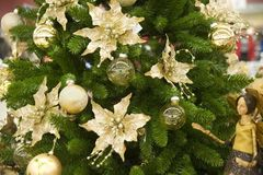 毛皮装饰品结构树 免版税图库摄影