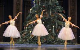 毛线裙子女孩舞蹈芭蕾-芭蕾胡桃钳 库存图片
