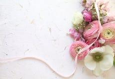 在桃红色和白色的新鲜的春天花 免版税库存图片
