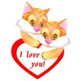 毛茸的姜小猫滑稽和逗人喜爱的夫妇  贺卡谷 图库摄影
