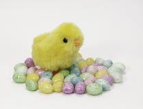 毛茸的黄色小鸡和糖果鸡蛋 免版税库存图片